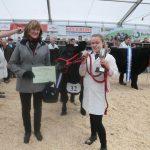 Truro Primestock show cattle prize winner
