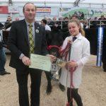 Truro Primestock show cattle prize winne