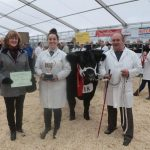 Truro Primestock show prize winner cattle