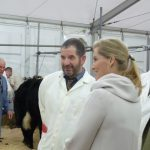 Truro-Primestock-Show-2018-Countess-of-Wessex-Judge-Cow-02